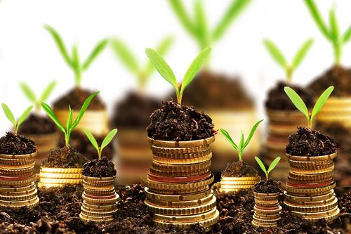 Internationaal Monetair Fonds pleit voor meer vaste contracten